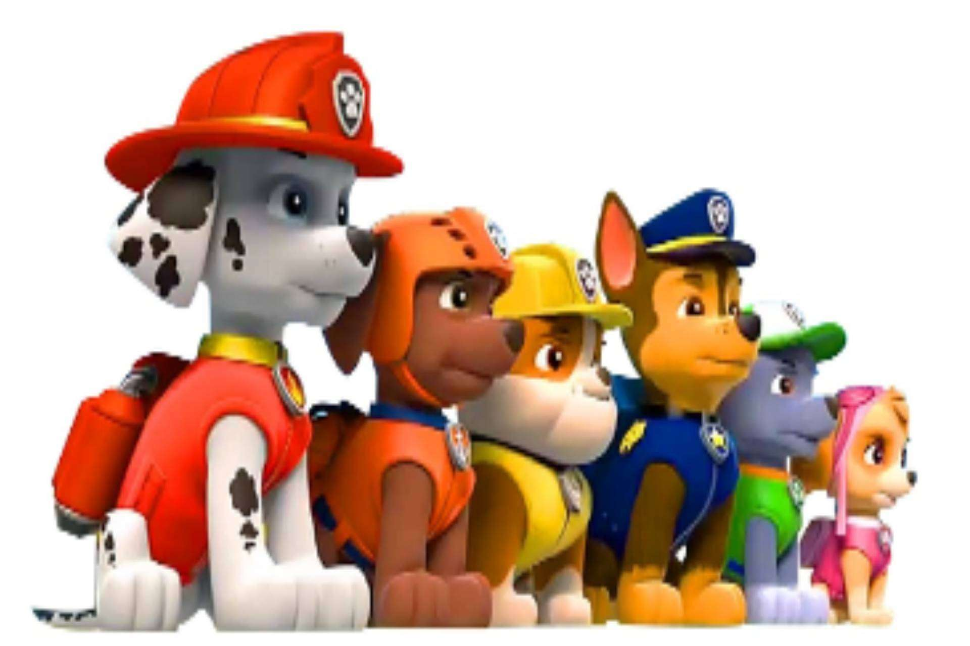 Paw Patrol Products