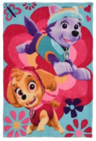 Paw Patrol Skye And Everest On Butterfly Background Fleece Blanket