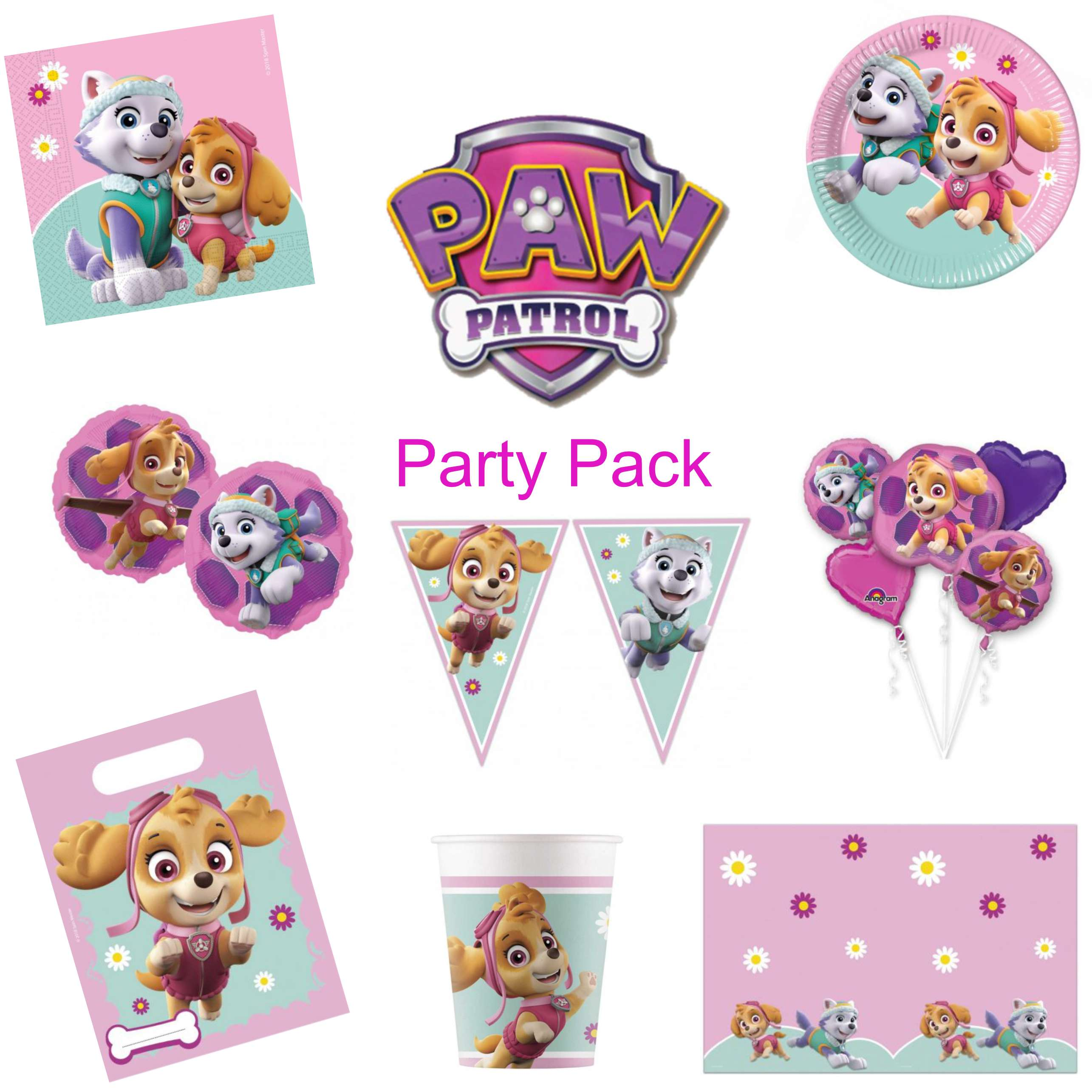 Paw Patrol Girls Party Pack